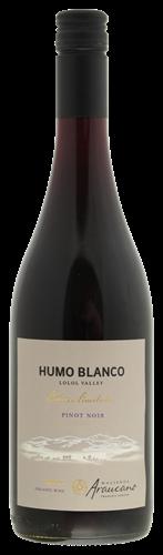 Afbeelding van Araucano Humo Blanco Pinot Noir