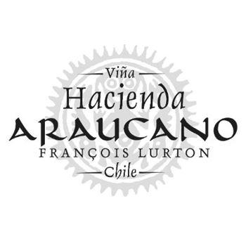 Afbeelding voor fabrikant Araucano Humo Blanco Pinot Noir