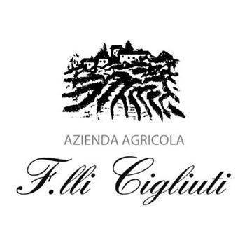 Afbeelding voor fabrikant Cigliuti Barbera d'Alba Vigna Serraboella