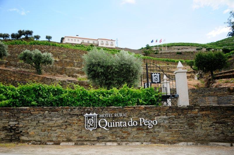 Quinta do Pégo LBV - Best of Show!